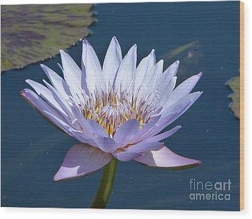 Purple Glory Wood Print by Marguerita Tan