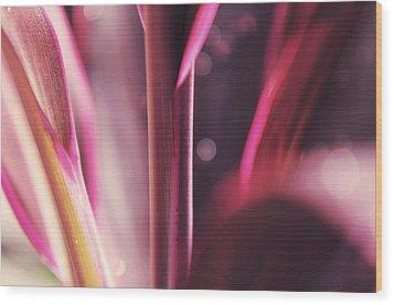 Purple Glow Wood Print by Jenny Rainbow