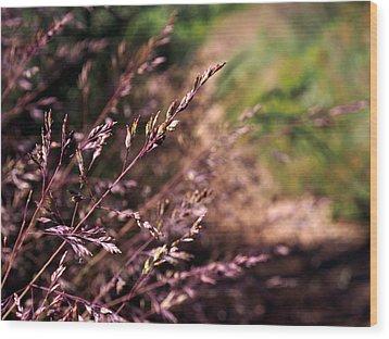 Purple Grass Wood Print by Kaleidoscopik Photography
