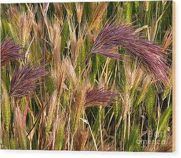 Purple Grasses Wood Print by Meghan at FireBonnet Art