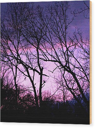 Wood Print featuring the photograph Purple Haze by Candice Trimble