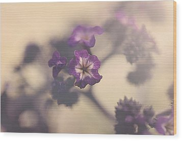 Purple Haze Wood Print by Faith Simbeck