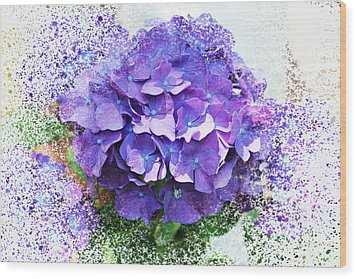 Purple Hydrangea Abstract Wood Print by Judy Palkimas