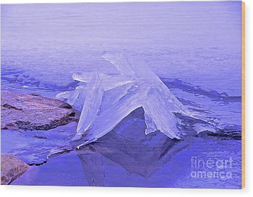 Purple Ice Wood Print by Randi Shenkman