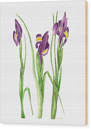 Wood Print featuring the painting Purple Iris  by Nan Wright