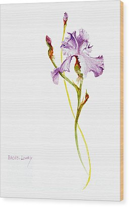 Wood Print featuring the painting Purple Iris by Rachel Lowry