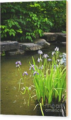 Purple Irises In Pond Wood Print by Elena Elisseeva
