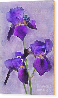 Purple Irises - Painted Wood Print