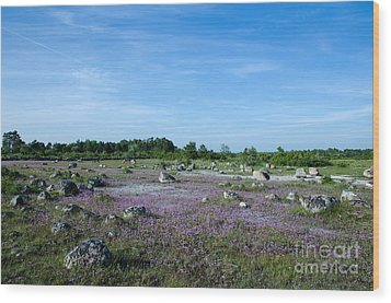 Wood Print featuring the photograph Purple Landscape by Kennerth and Birgitta Kullman