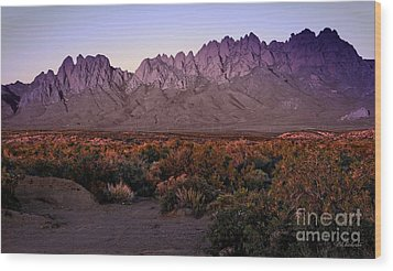 Wood Print featuring the photograph Purple Mountain Majesty by Barbara Chichester