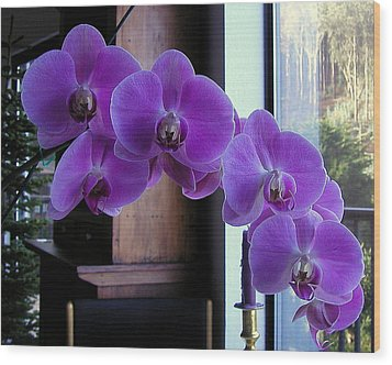 Wood Print featuring the photograph Purple Orchid by AJ  Schibig