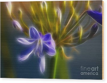 Purple Passion 6318-fractal Wood Print by Gary Gingrich Galleries