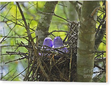 Purple Peeps Pair Wood Print by Al Powell Photography USA