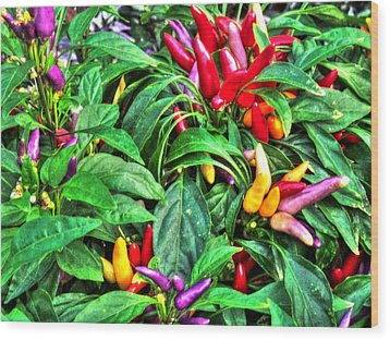 Purple Peppers Wood Print
