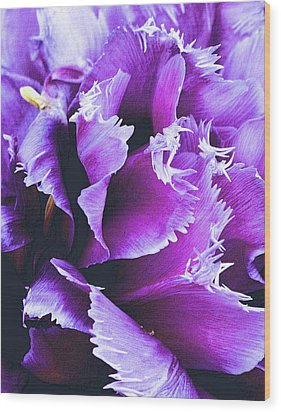 Purple Perfection Wood Print