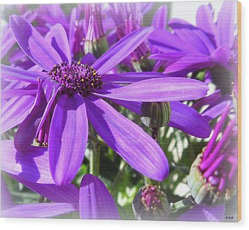 Purple Petals Wood Print by Heidi Manly
