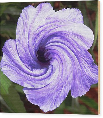 Purple Petunia Twirl Wood Print by Belinda Lee