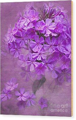 Purple Phlox Wood Print by Lena Auxier