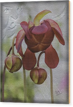 Wood Print featuring the photograph Purple Pitcher Plant by Betty Denise