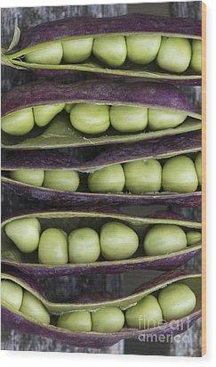 Purple Podded Pea Pattern Wood Print by Tim Gainey