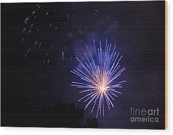 Wood Print featuring the photograph Purple Power by Suzanne Luft