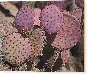 Purple Prickly Pear Cactus Wood Print by Rona Black