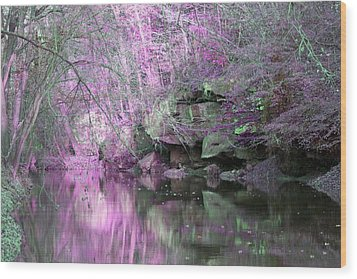 Wood Print featuring the photograph Purple Rock Reflection by Lorna Rogers Photography