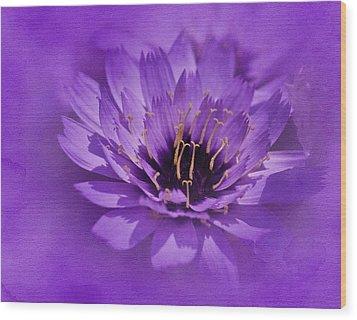 Purple Study Wood Print