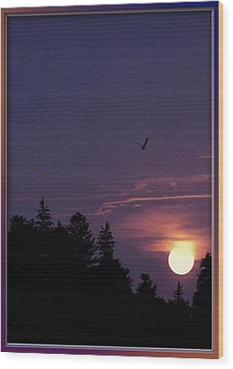 Wood Print featuring the photograph Purple Sunset With Sea Gull by Peter v Quenter
