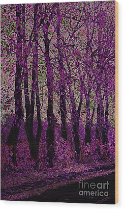 Purple Trees Wood Print by Carol Lynch