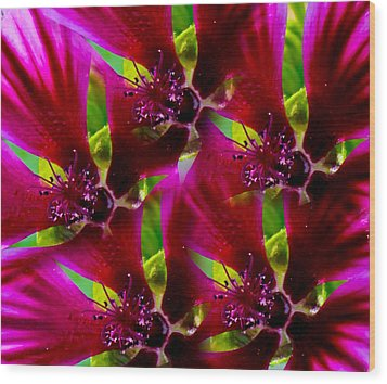 Wood Print featuring the photograph Purple Trip by David Stine