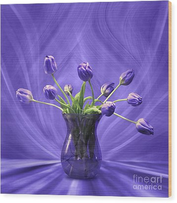 Purple Tulips In Purple Room Wood Print