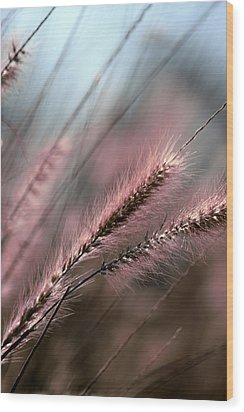 Purple Waves Of Grain Fine Art Print Wood Print by Penny Hunt