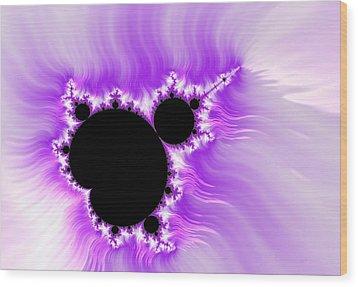 Purple White And Black Mandelbrot Set Digital Art Wood Print by Matthias Hauser