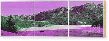 Purple Winter Triptych Wood Print by Barbara Griffin