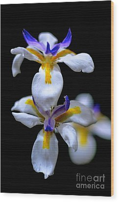 Purple Yellow And White Wood Print by Bobby Mandal