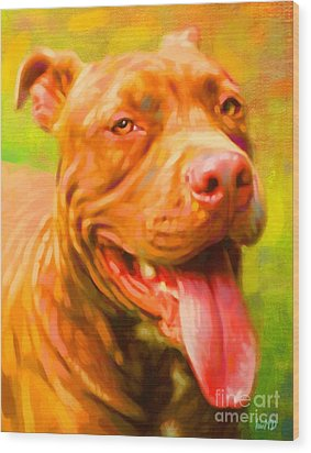 Pit Bull Portrait Wood Print by Iain McDonald