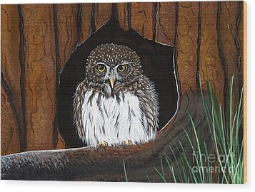 Wood Print featuring the painting Pygmy Owl by Jennifer Lake