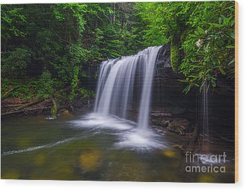 Quadrule Falls Summer Wood Print