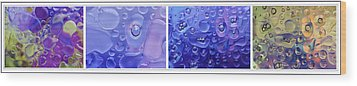 Wood Print featuring the photograph Quadryptich Of Colorful Water Bubbles by Peter v Quenter