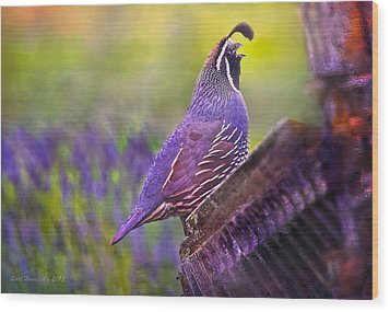 Quail In Lavender Wood Print