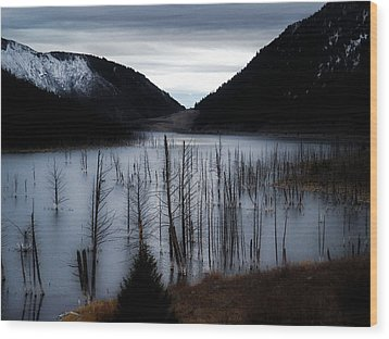 Quake Lake Wood Print by Tarey Potter