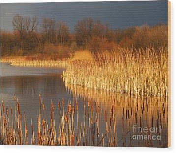 Quakertown Marsh Before Spring Storm Wood Print