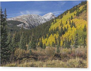 Quandary Peak Wood Print by Aaron Spong