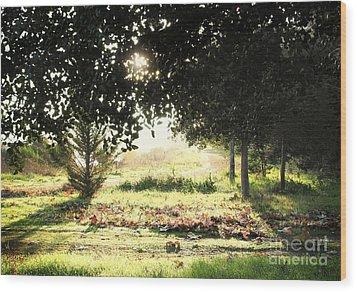 Wood Print featuring the photograph Quarry Lakes Sunrise by Ellen Cotton