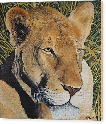 Queen Of The African Savannah Wood Print by Caroline Street