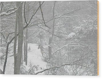 Querida In The Snow Storm Wood Print by Patricia Keller