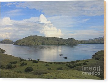 Wood Print featuring the photograph Quiet Bay by Sergey Lukashin