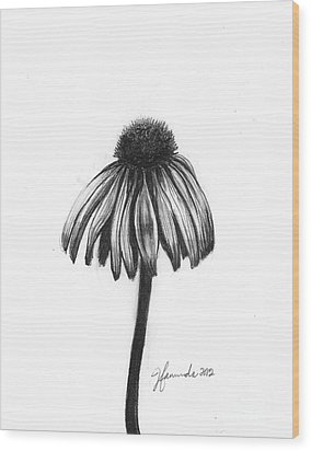 Quiet Comfort Wood Print by J Ferwerda