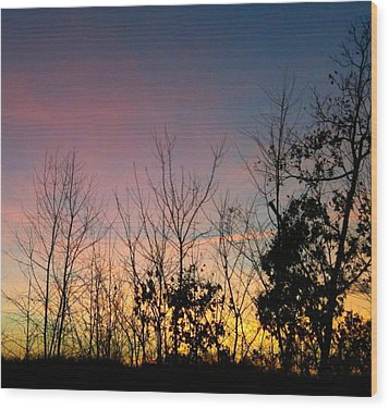 Wood Print featuring the photograph Quiet Evening by Linda Bailey
